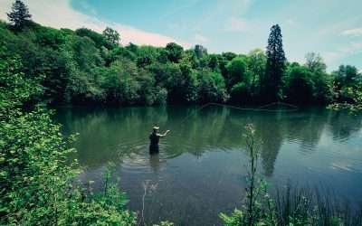 Marryat Rods: Which Rod Should I Buy?